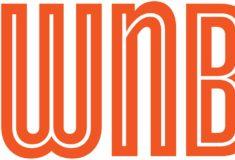 Image de l'article À la découverte de la plateforme WNBAKicks